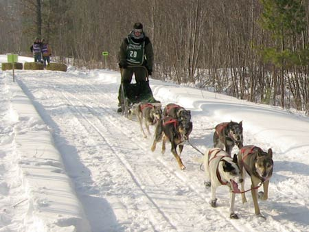 Apostle Island Dog Sled Race