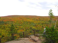 Oberg Mountain Fall Color