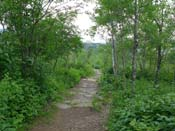 Duluth Enger Park Superior Hiking Trail