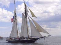 Privateer Lynx Sailing Ship