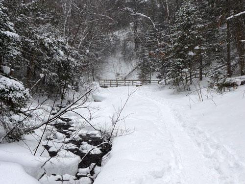 Snowshoe Amp X C Ski Trails Munising Michigan