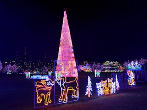 bentleyville Christmas Lights