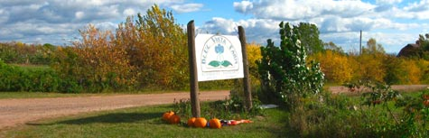 Bayfield Orchard And Scarecrow Tour