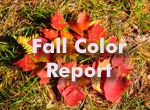 fall color tour report