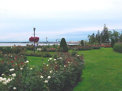 lakewalk rose garden