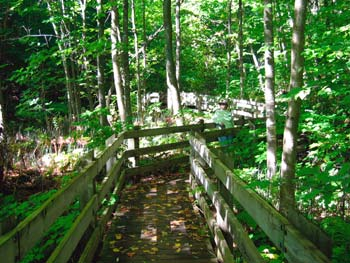 iron bridge hiking trail
