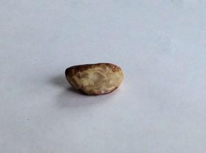 Peeler Agate