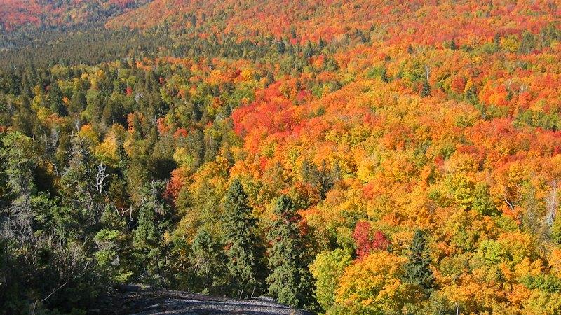 Fall Color Lake Superior Circle Tour Superior Trails